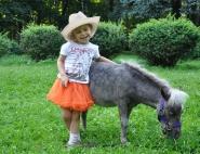 Пони для детей