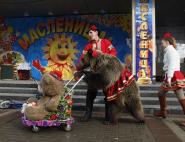 medved-na-maslenicu