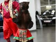 medved-na-prazdnik